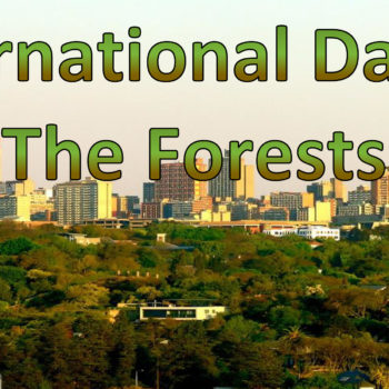 International Day of The Forests 2017 with FTFA
