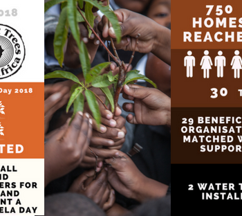 Planting a Legacy this Mandela Day – in Mvezo and Beyond – 2631 Trees and Counting