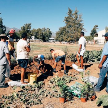 The EduPlant Programme Launches its Next Cycle of Support