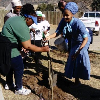 Planting 500 Trees in Honour of 100 Years Since Nelson Mandela's Birth