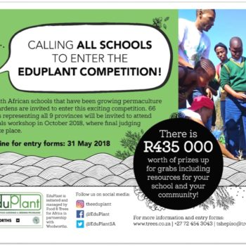 Calling All Schools to Enter The EduPlant 2018 Food Gardening Competition