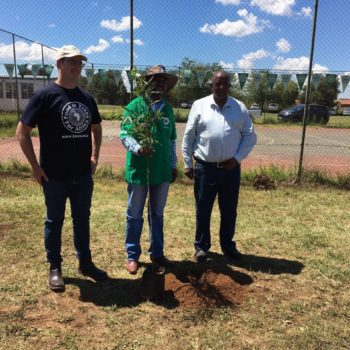 Food Forests – FTFA's New Programme