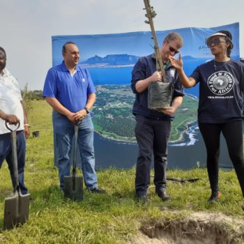 101 trees to honour Nelson Mandela