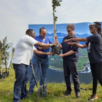 101 Trees Planted on Robben Island for Madiba