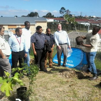 International Day of the Forests – Planting 300 Trees in Fire and Drought Affected Areas