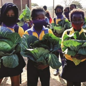 """Malnutrition is a """"slow violence"""" against South Africa's children"""