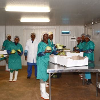 feed-africa-sustainable-packhouse-supply-chain