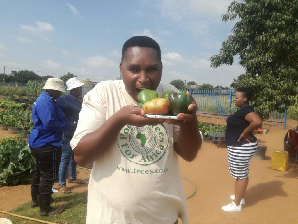 FTFA Harvest eat local